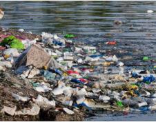 загрязнение водоема в Сергиево-Посадском районе