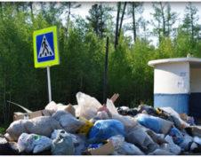Незаконный выброс мусора